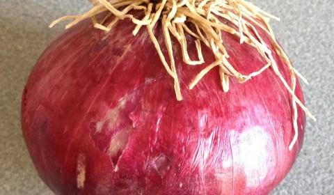 cebolla roja para ceviche